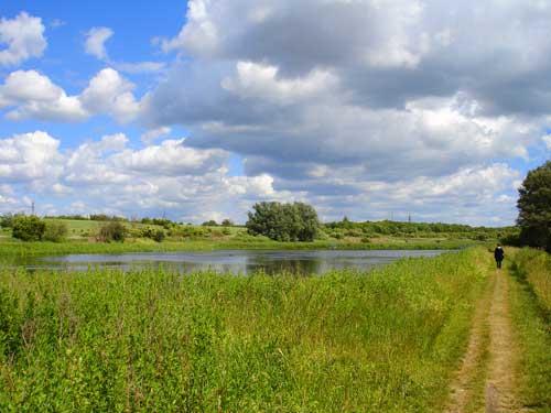 Dammarna vid Höje å i Lund har anlagts för att, med hjälp av denitrifikationsbakterier, minska övergödningen.