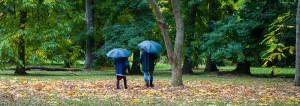 paraplyer. foto: charlotte steneloo.