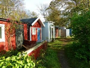 Färgglada hoddor i Klagshamn. Foto: Magnus Billqvist.
