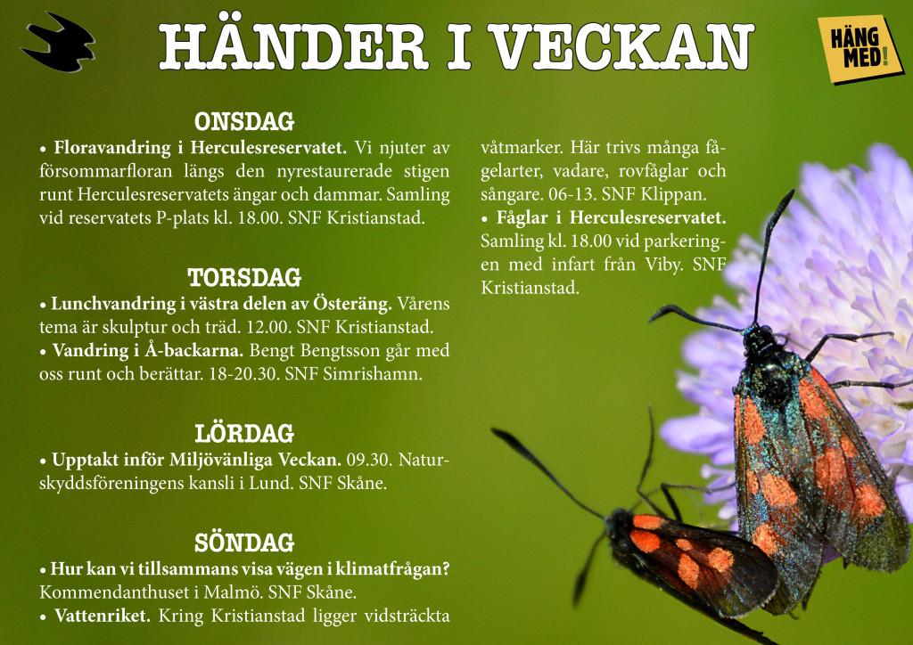Händer-i-veckan3_WEB