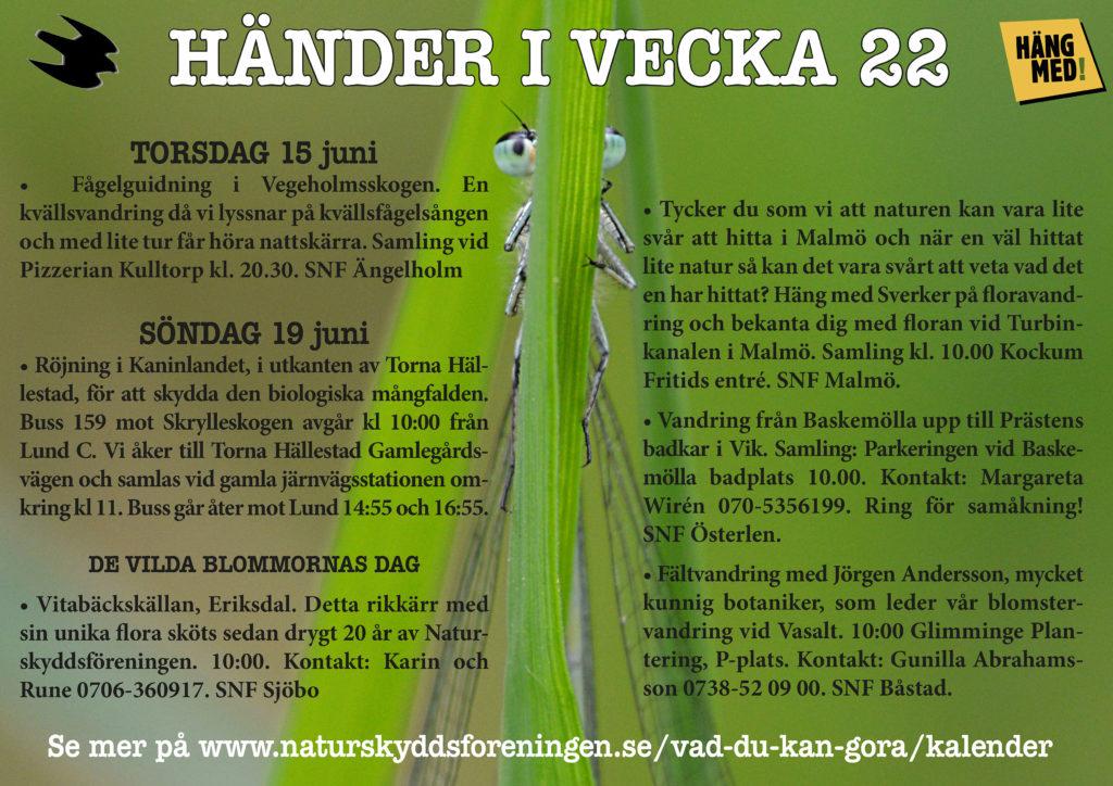 Händer-i-vecka22_FB