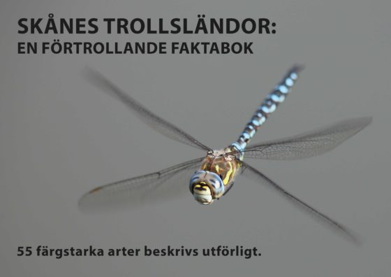 Bokreklam7
