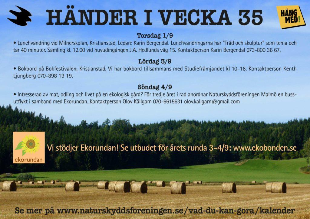 Händer-i-vecka35