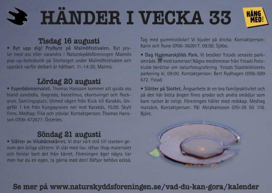 Händer-i-vecka33
