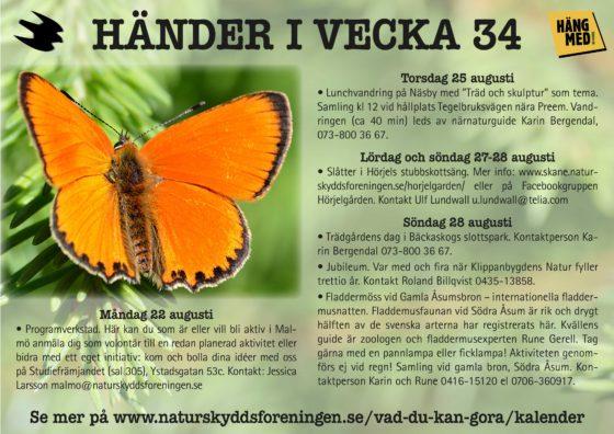 Händer-i-vecka34