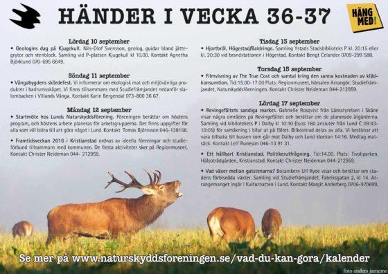 hander-i-vecka3637